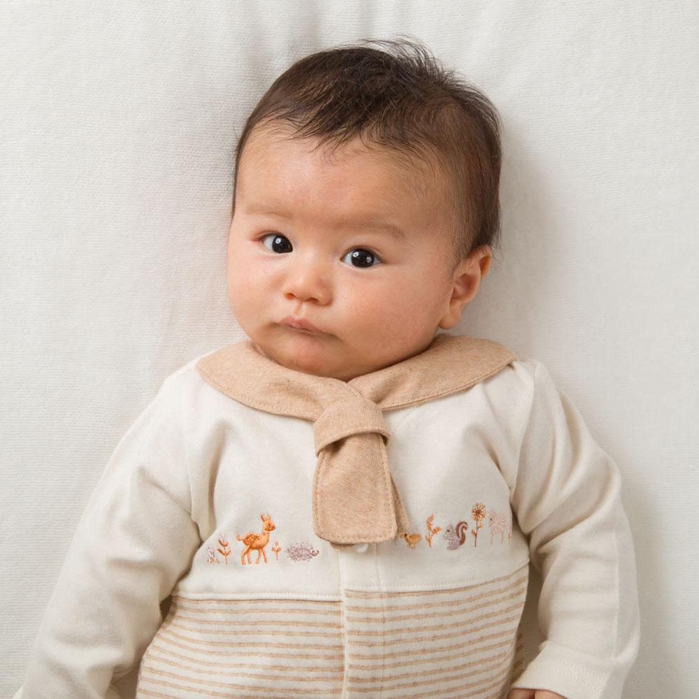 オーガニックコットン 日本製 ツーウェイオール カバーオール ベビードレス セレモニー お宮参り 出産祝い 準備品 退院 新生児