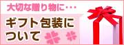 お宮参りセレモニー用ベビードレス ベビーネットショップ